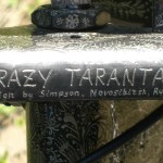 the front part of the Crazy Tarantas